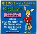 GIZMO x Down the Rabbit-Hole presents